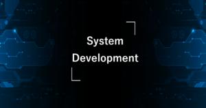 System Development システムデベロップメント